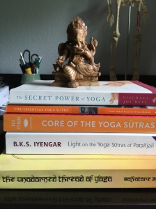Yoga Sutra collection of books